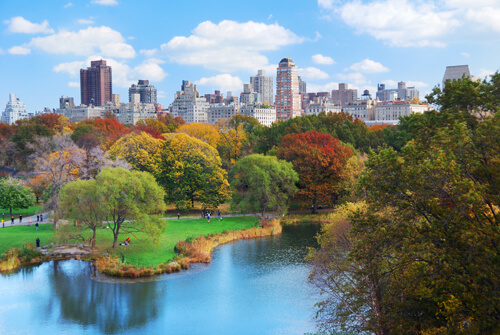 khu-dat-lan-can-central-park-new-york